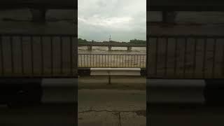"""В Невинномысске река Кубань затопила парковку """"Золотого телёнка"""""""