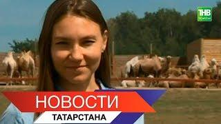 Новости Татарстана 24/07/18 ТНВ