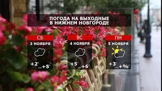 Прогноз погоды. Последний месяц осени — температура на плюс
