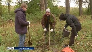 Вологжане могут помочь в восстановлении зеленых зон