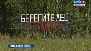 МЧС предупреждает: в Новосибирской области высокая пожароопасность