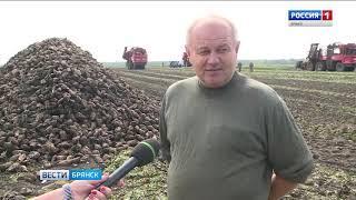 """""""Вести. Брянск"""" (эфир 19.09.2018 в 20:45)"""