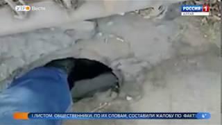 Общественники обнаружили дыру на мосту через Пивоварку