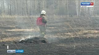 Леса Алтайского края пострадали от огня