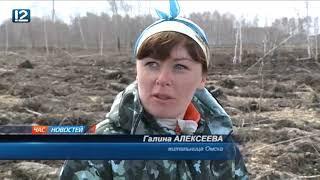 В Омском районе чиновники и волонтёры засадили ёлками