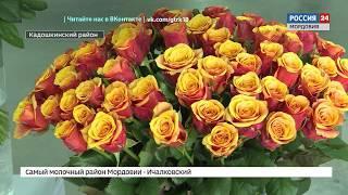 Владимир Волков открыл новую цветочную теплицу в Кадошкине  Теперь в республике будут выращивать 40