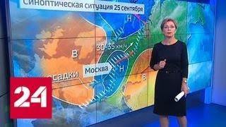 """""""Погода 24"""": Центральную Россию ждут первые заморозки - Россия 24"""