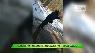 ИКГ Чепецким хулигнам грозит срок #7