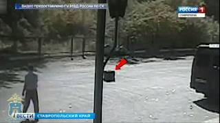 Полицейские вернули пассажиру похищенный багаж