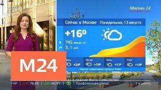 """""""Утро"""": повышенное атмосферное давление ожидается в Москве в ближайшие дни - Москва 24"""
