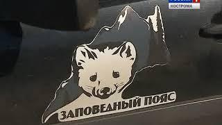 Побывать в Кологривском заповеднике теперь можно будет в виртуальном пространстве
