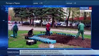 В Перми появится футбольный мяч из цветов