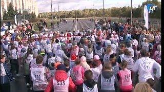 На очередной «Кросс Нации» уже записались 525 жителей области