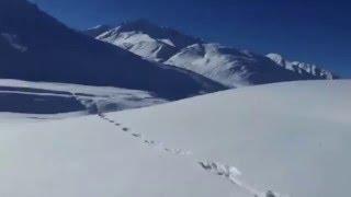 Преследование снежного барса на снегоходах