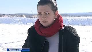 Жители двух посёлков Ярославского района обеспокоены горой из нечистот рядом с их домами