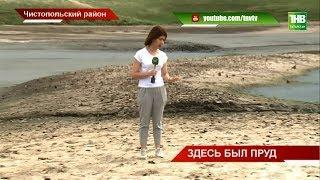 В пруду деревни Исляйкино Чистопольского района пропала вода - ТНВ