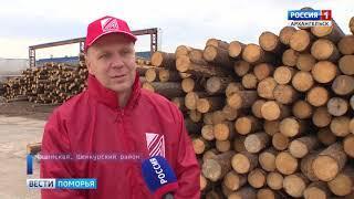 Работники леса отметили профессиональный праздник