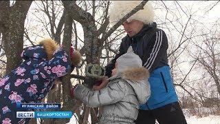 Необычное хобби: житель Башкирии снимает диких животных на фотоловушки