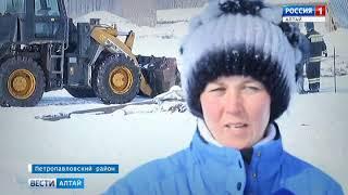 В зоне подтопления Алтайского края от талой воды и льда погибло около 250 животных