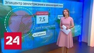 После землетрясения в Индонезии афтершоки могут продолжаться несколько недель - Россия 24
