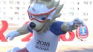 Волонтеры - душа Чемпионата