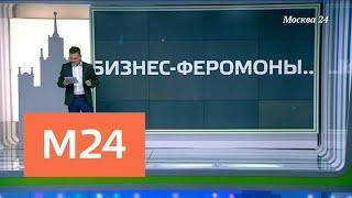 """""""Москва сегодня"""": проект бюджета столицы сохраняет социальную направленность - Москва 24"""