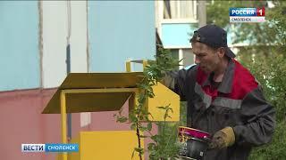 В Смоленске появятся урны для уборки за собаками