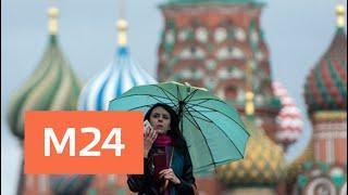 Ночью в Москве ожидаются заморозки - Москва 24