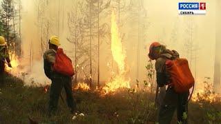 Бурятию накрыло дымом от сильных лесных пожаров
