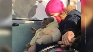 Необычный пассажир: в общественном транспорте Ростова ехала мартышка в детском комбинезоне