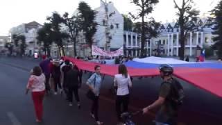 Шествие с флагом в Воронеже
