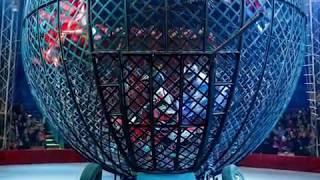 """Московский цирк """"Адреналин"""" удивит шоу-программой биробиджанского зрителя(РИА Биробиджан)"""