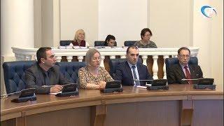 В Великом Новгороде прошел обучающий семинар общественных наблюдателей