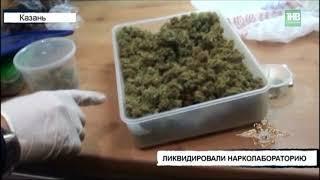 В Татарстане ликвидировали нарколабораторию и изъяли больше 11 килограммов запрещенных веществ - ТНВ