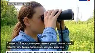 Дальневосточный аист стал главной темой экологической смены в Амурском заказнике