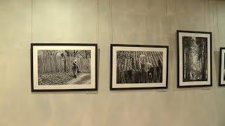 Новая фотовыставка в Музее им. Эрьзи