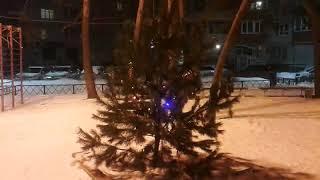 Ёлка в марте. Воронеж