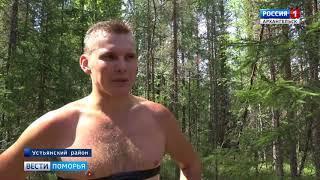 В Устьянской Малиновке на территории школы олимпийского резерва прошёл открытый областной турнир