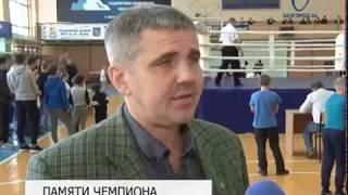 Турнир по кикбоксингу собрал в Белгороде более 150 бойцов