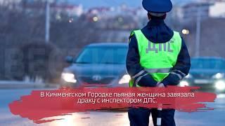 Пьяная скандалистка отхлестала инспектора ГИБДД