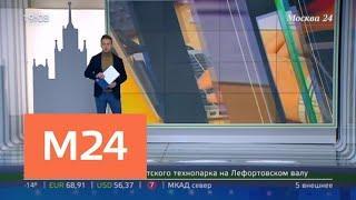 """""""Москва сегодня"""": информационные технологии Москвы - Москва 24"""