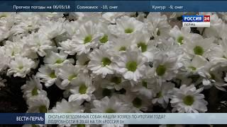 Пермский губернский оркестр дарил женщинам цветы и музыку