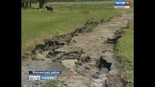 В Яльчикском районе подсчитывают убытки от  града