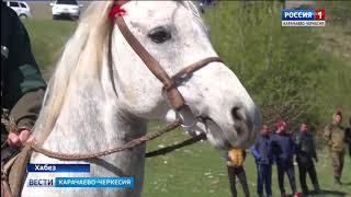 В Хабезе прошла выставка лошадей