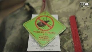Клещи в Красноярске