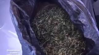 Наркокурьера с пакетом марихуаны задержали полицейские в Биробиджане(РИА Биробиджан)