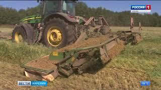 Карельские сельхозпредприятия завершают  первую заготовку кормов