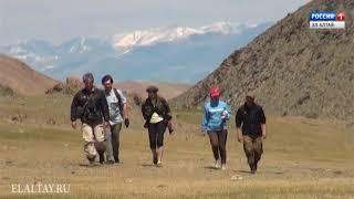 Двух жителей Ташанты обвиняют в незаконной добыче особо ценных диких животных