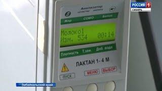 В Забайкальском крае фермеры осваивают электронную систему «Меркурий»