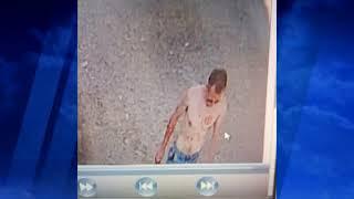 Жуткое убийство в Симферопольском районе